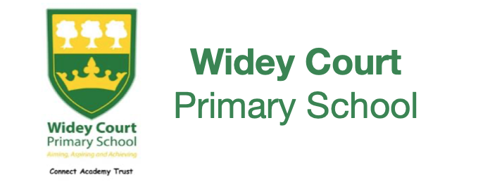 Primary and 11 Plus Widey Court Primary School - Logo
