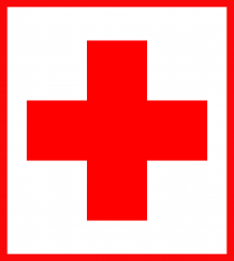 red cross beirut appeal chemistry of ammonium nitrate